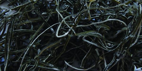 天与海宝 きざみ昆布|おいしいお茶と食品の通信販売|食品通販 味楽園ネット